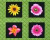 Květy, š. 110cm